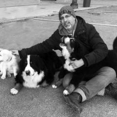 Foto de Jorge M., Cuidadores de perros baratos en Brunete