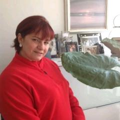 Foto de Leida P., Limpieza  de Hogar baratos en Bizkaia